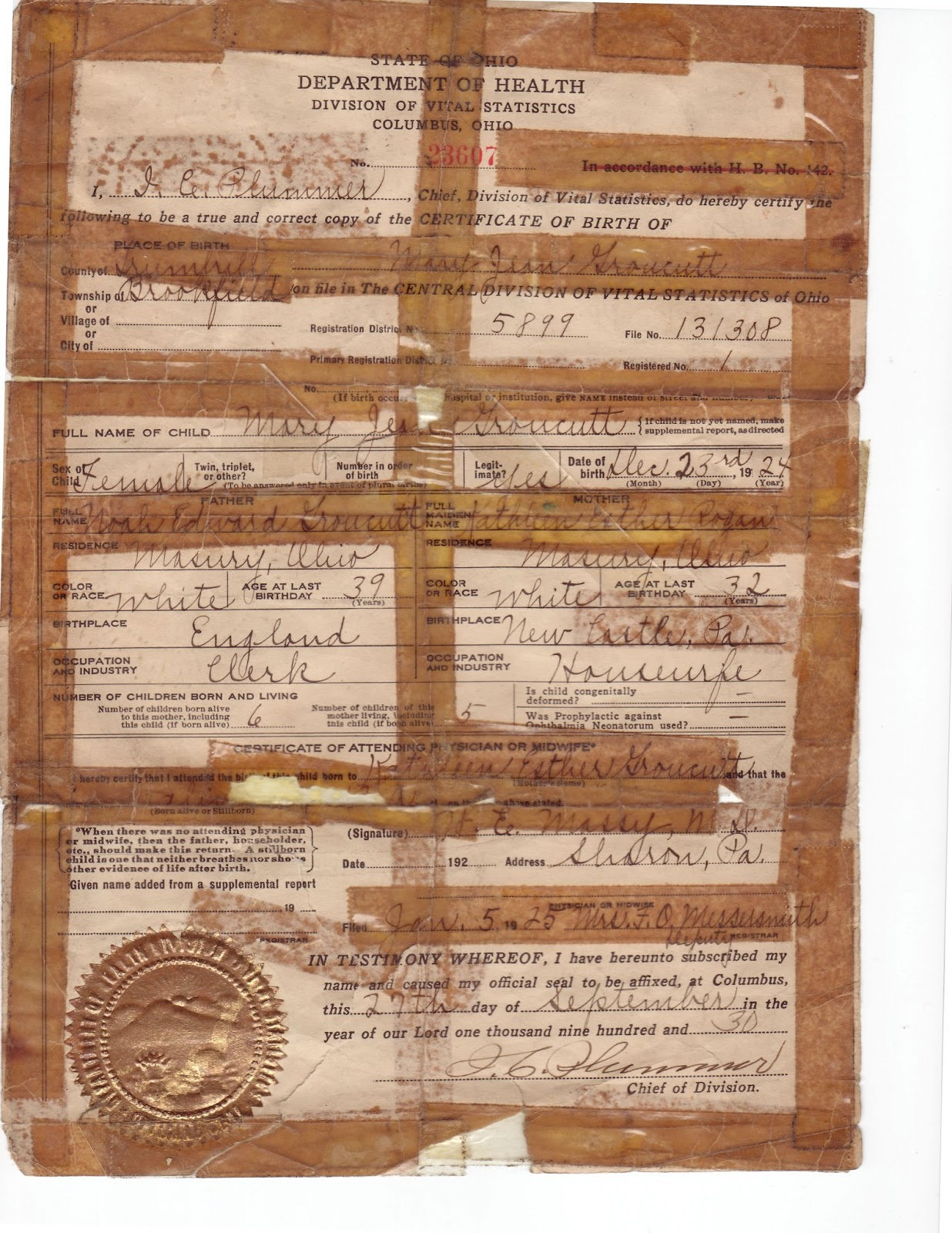 Document lowry genealogy treasure chest thursday 1924 birth certificate of jean groucutt aiddatafo Image collections